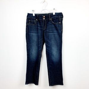 "American Eagle ""Artist"" Stretch Blue Jeans"